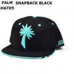 WHOLESALE-BLVD-SUPPLY-SNAPBACK-HATS-PALM-TEAL
