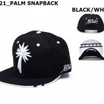 WHOLESALE-BLVD-SUPPLY-SOULJA-BOY-SNAPBACK-HATS-PALM
